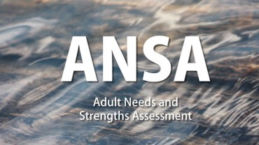 Adult Needs and Strengths Assessment